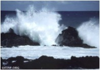 Pacific Breakers on the south coast of Rapa Nui (Easter Island), 1983. Photo: David C. Ochsner, copyright Jo Anne Van Tilburg/EISP.