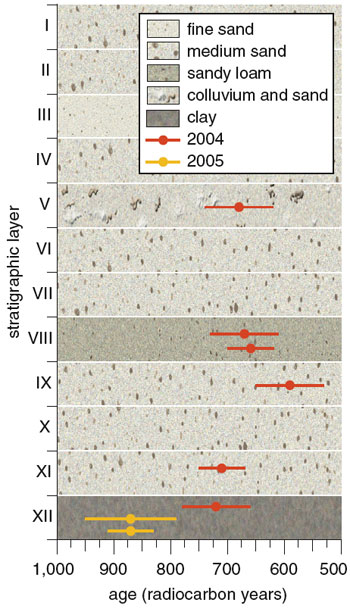 "Figure 5. In 2004 and 2005, the author led excavations on Anakena Beach and found evidence that humans arrived on the island only about 900 ""radiocarbon years"" ago, which after applying the relevant corrections corresponds to around 1200 A.D. Eight dates (with error bars) from charcoal samples found during the digs are mapped onto the stratigraphic layer in which they were found (layers are not drawn to scale). Barbara Aulicino"